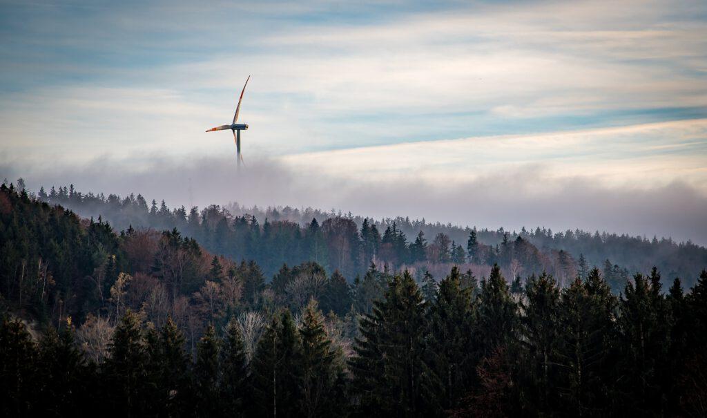 Windkraftausbau gefährdet Natur